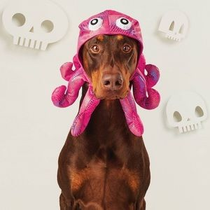 Pet Octopus Hat